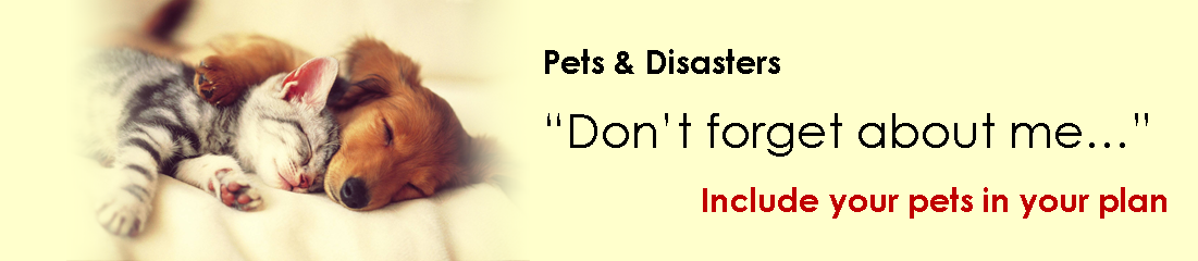 Include your pets in your plan
